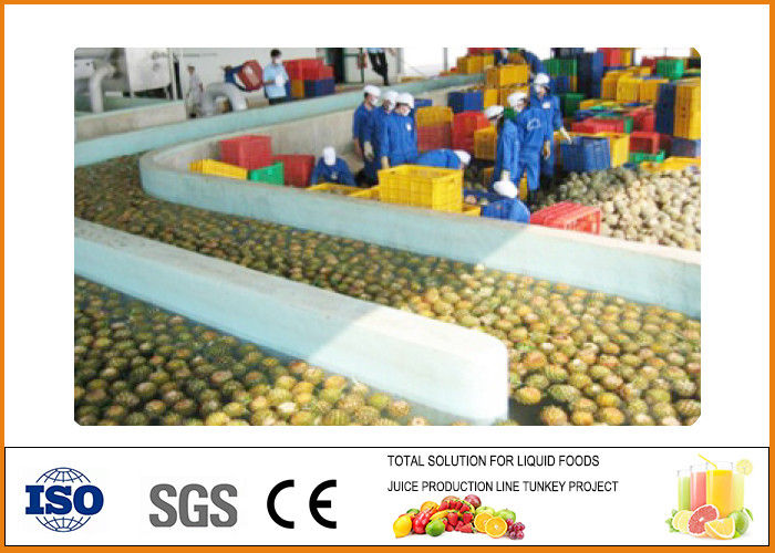 Automatic Pineapple Processing Line 10~20 Brix Fixation Content