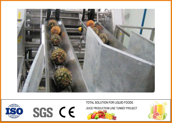 Turnkey Pineapple juice Processing Line 10T/H Capacity CFM-B-02-10T