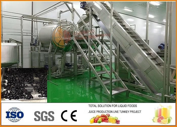 Turnkey SS304 Blueberry Dried Fruit Production Line CFM-PB-03-22T
