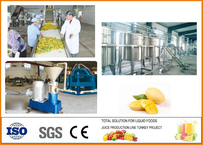 Turnkey Concentrated Mango Juice Processing Line CFM-M-03-010T CE Certification